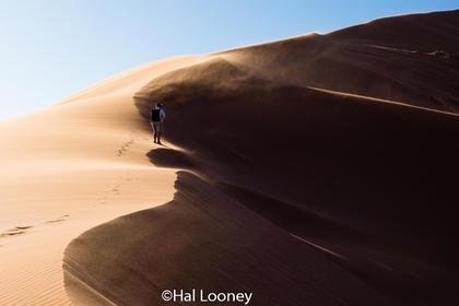 _LM46356 Dune #1, Tim Smith