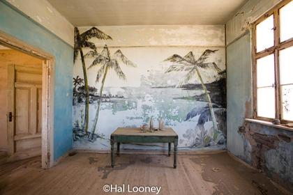 _LM47010 Palm Room, Elizabeth Bay