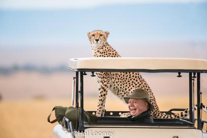 Hal and Cheetah
