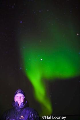 Hal_Northern Lights