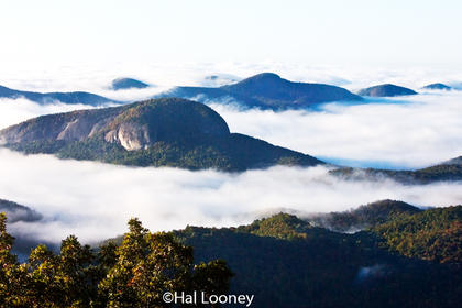 Looking Glass Rock, Mountain Tops in Fog