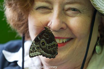 Bert and Butterfly, Costa Rica