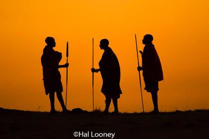 Warriors Maasai Mara